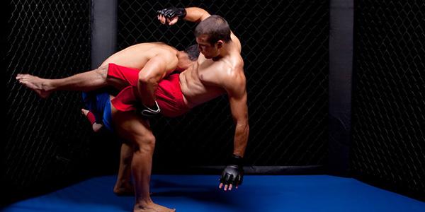 激しい格闘技